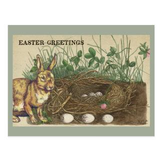 Cartão Postal Cumprimentos coelho da páscoa, ovos, ninho, grama,