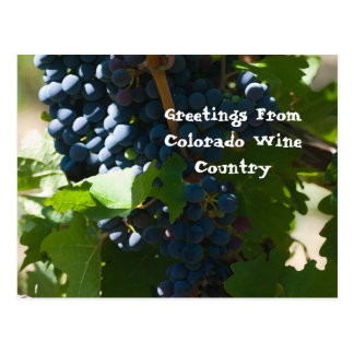 Cartão Postal Cumprimentos da região vinícola de Colorado