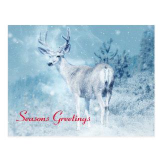 Cartão Postal Cumprimentos das estações dos cervos e dos