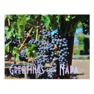 Cartão Postal Cumprimentos de Napa Valley Califórnia