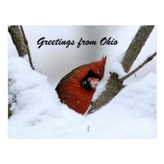 Cartão Postal Cumprimentos de Ohio