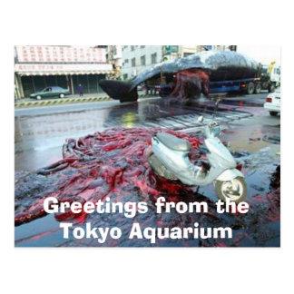 Cartão Postal Cumprimentos do aquário de Tokyo