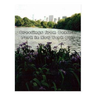 Cartão Postal Cumprimentos do Central Park na Nova Iorque