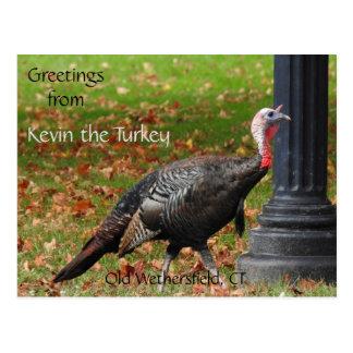Cartão Postal Cumprimentos Kevin a Turquia - Wethersfield velho,