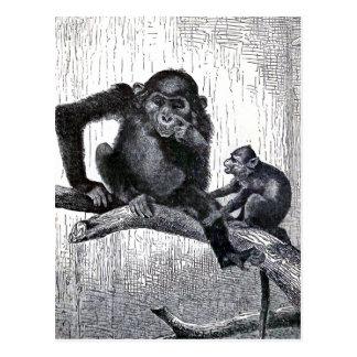 """Cartão Postal Da """"ilustração do macaco do vintage juventude e da"""
