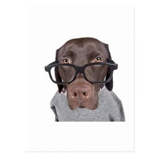 Cartão Postal Dawg Geeky