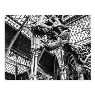 """Cartão Postal De """"cartão do esqueleto T-Rex"""""""