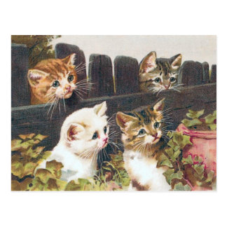 """Cartão Postal De """"vintage quatro gatinhos"""""""