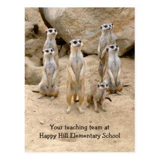Cartão Postal De volta à escola, ensino de equipe Meerkats