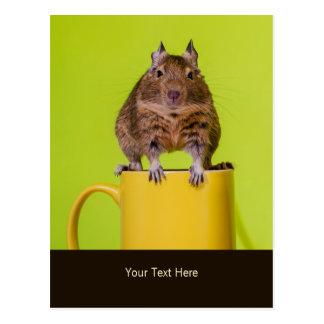 Cartão Postal Degu que senta-se em uma caneca