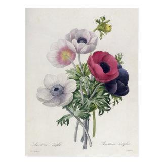 Cartão Postal 'DES de Les Choix mais Belles Fleurs