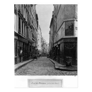 Cartão Postal DES Moineaux da rua, de DES Orties da rua, Paris