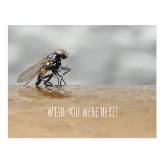 Cartão Postal Desejo do desdobrável você estava aqui