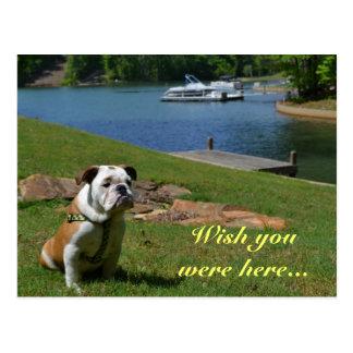 """Cartão Postal """"Desejo você estava aqui"""" buldogue inglês no lago"""