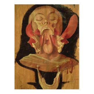 Cartão Postal Desenho anatômico da cabeça