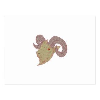 Cartão Postal Desenho da cabeça da ram da cabra de montanha