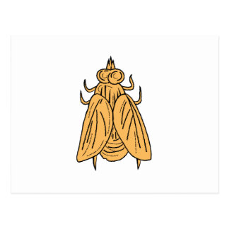 Cartão Postal Desenho da opinião superior da mosca