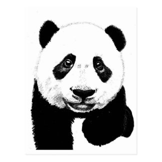 Cartão Postal Desenho da panda