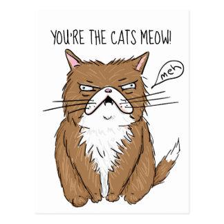 Cartão Postal Desenho mal-humorado engraçado do gato de Meh