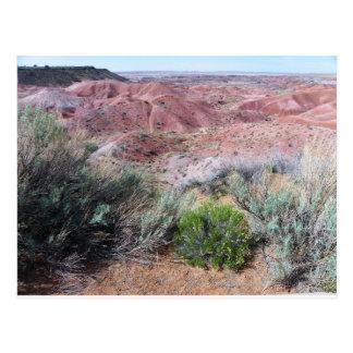 Cartão Postal Deserto pintado
