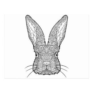 Cartão Postal Design bonito do coelho de coelho