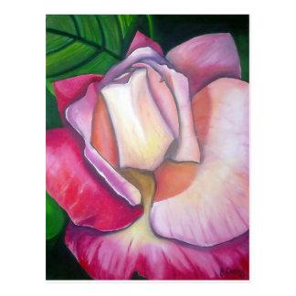 Cartão Postal Design cor-de-rosa da pintura a óleo por Joanne