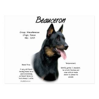 Cartão Postal Design da história de Beauceron