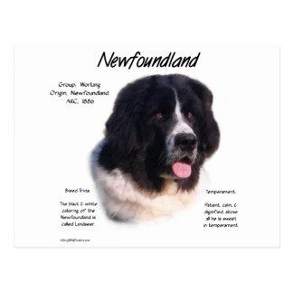 Cartão Postal Design da história de Terra Nova (landseer)