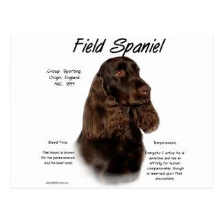 Cartão Postal Design da história do Spaniel de campo