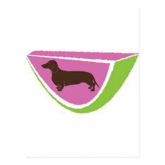 Cartão Postal Design da melancia do Dachshund do divertimento!