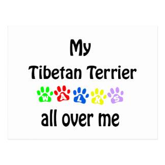 Cartão Postal Design das caminhadas de Terrier tibetano