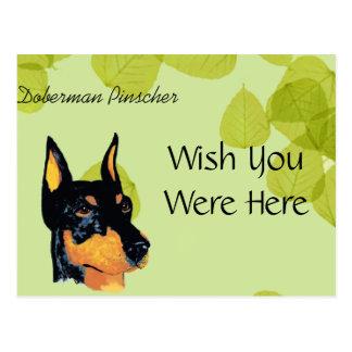 Cartão Postal Design das folhas do verde do ~ do Pinscher do