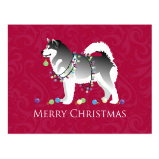 Cartão Postal Design do Feliz Natal do cão do Malamute do Alasca