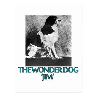 Cartão Postal design legal do cão