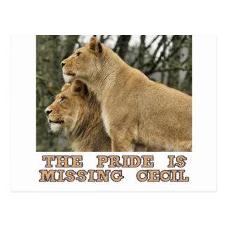Cartão Postal design legal dos leões