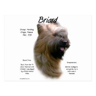 Cartão Postal Design (tawny) da história de Briard