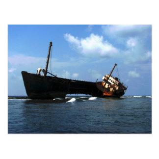 """Cartão Postal Destruição dos Cocos """"descuidados"""" Banderos de E,"""