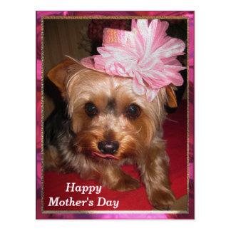 Cartão Postal Dia das mães feliz Yorkie