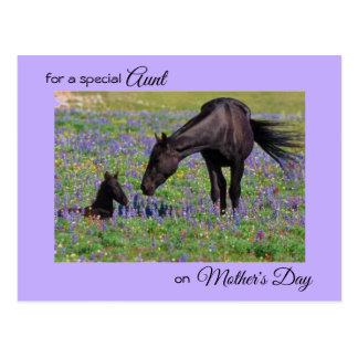 Cartão Postal Dia das mães para a tia Égua & a foto do potro