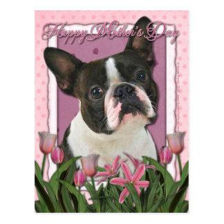 Cartão Postal Dia das mães - tulipas cor-de-rosa - Boston