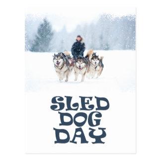 Cartão Postal Dia de cão do trenó - dia da apreciação