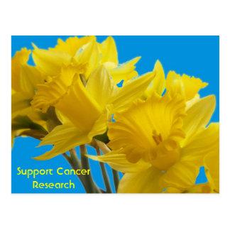Cartão Postal Dias do Daffodil