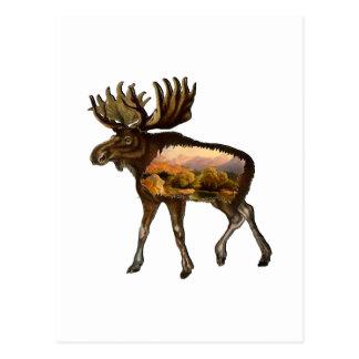 Cartão Postal Dias do selvagem