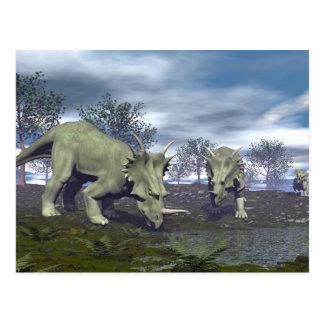 Cartão Postal Dinossauros do Styracosaurus que vão molhar - 3D