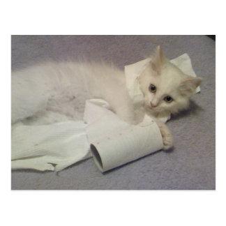 Cartão Postal divertimento do papel higiénico