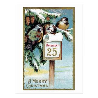 """Cartão Postal Do """"cartão 1900 dos pássaros Natal"""" -"""