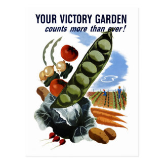 """Cartão Postal Do """"cartão seu jardim de vitória"""""""