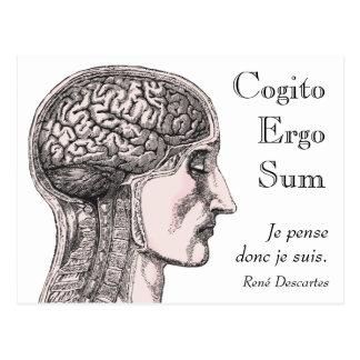 Cartão Postal Do cérebro humano da ilustração de Cogito soma por