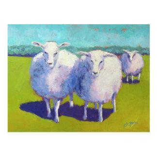 Cartão Postal Dois carneiros no campo