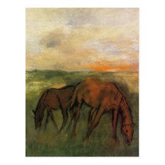 Cartão Postal Dois cavalos em um pasto por Edgar Degas
